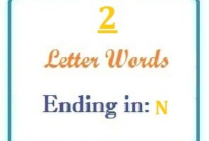 Two letter words ending in N for domain names and scrabble with Meaning