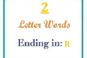 Two letter words ending in R for domain names and scrabble with Meaning