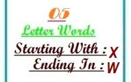 Five letter words starting with X and ending in W