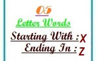 Five letter words starting with X and ending in Z