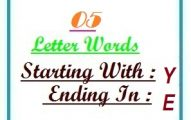 Five letter words starting with Y and ending in E