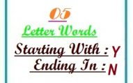 Five letter words starting with Y and ending in N