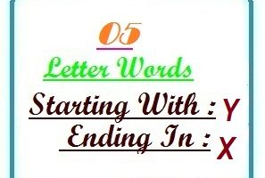 Five letter words starting with Y and ending in X