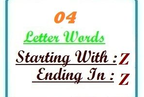 Four letter words starting with Z and ending in Z