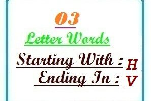Three letter words starting with H and ending in V