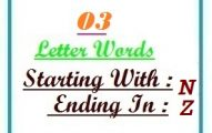 Three letter words starting with N and ending in Z