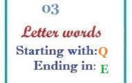 Three letter words starting with Q and ending in E