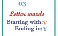 Three letter words starting with V and ending in Y
