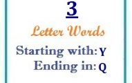 Three letter words starting with Y and ending in Q