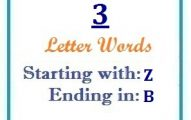 Three letter words starting with Z and ending in B