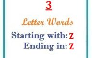 Three letter words starting with Z and ending in Z