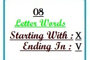 Eight letter words starting with X and ending in V