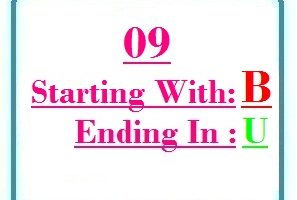 Nine letter words starting with B and ending in U