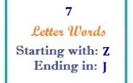 Seven letter words starting with Z and ending in J