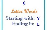 Six letter words starting with Y and ending in L