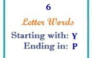 Six letter words starting with Y and ending in P