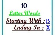 Ten letter words starting with B and ending in X