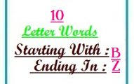 Ten letter words starting with B and ending in Z