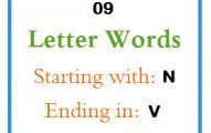 Nine letter words starting with N and ending in V