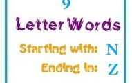 Nine letter words starting with N and ending in Z