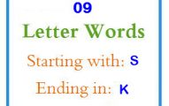 Nine letter words starting with S and ending in K