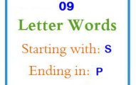 Nine letter words starting with S and ending in P