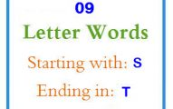 Nine letter words starting with S and ending in T