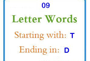 nine letter words starting with t and ending in d