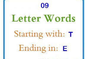 Nine letter words starting with T and ending in E
