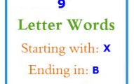 Nine letter words starting with X and ending in B
