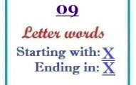 Nine letter words starting with X and ending in X