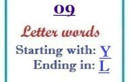 Nine letter words starting with Y and ending in L