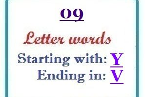 Nine letter words starting with Y and ending in V