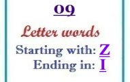 Nine letter words starting with Z and ending in I