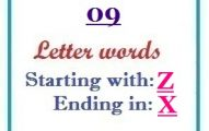 Nine letter words starting with Z and ending in X