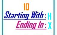 Ten letter words starting with H and ending in X