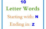 Ten letter words starting with N and ending in Z