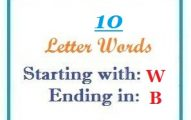 Ten letter words starting with W and ending in B