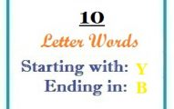 Ten letter words starting with Y and ending in B