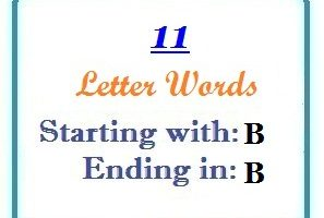 Eleven letter words starting with B and ending in B