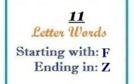 Eleven letter words starting with F and ending in Z