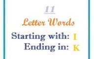 Eleven letter words starting with I and ending in K