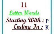 Eleven letter words starting with P and ending in K