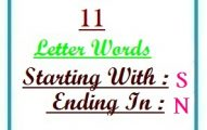 Eleven letter words starting with S and ending in N