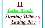Eleven letter words starting with S and ending in T