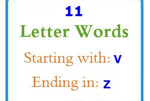 Eleven letter words starting with V and ending in Z
