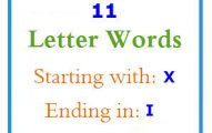 Eleven letter words starting with X and ending in I