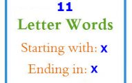 Eleven letter words starting with X and ending in X
