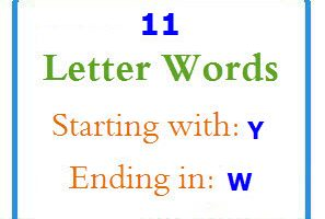 Eleven letter words starting with Y and ending in W