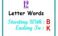 Twelve letter words starting with B and ending in K
